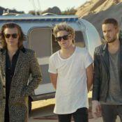 One Direction : Le clip ''Steal My Girl'' enchaîne les polémiques...