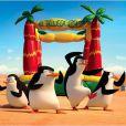 Bande-annonce du film Les Pingouins de Madagascar, en salles le 17 décembre 2014
