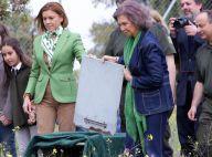 Sofia d'Espagne : Un vent de liberté, loin de la double vie de Juan Carlos