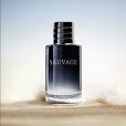 La dernière campagne Dior pour son parfum Sauvage, photo publiée le 19 août 2015