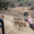 """""""Ronan Keating et sa femme Storm Uechtritz lors d'un safari sur l'île de Frégate non loin des Seychelles / photo postée sur Instagram."""""""