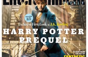 Les Animaux fantastiques : Les premières images du spin-off d'Harry Potter !