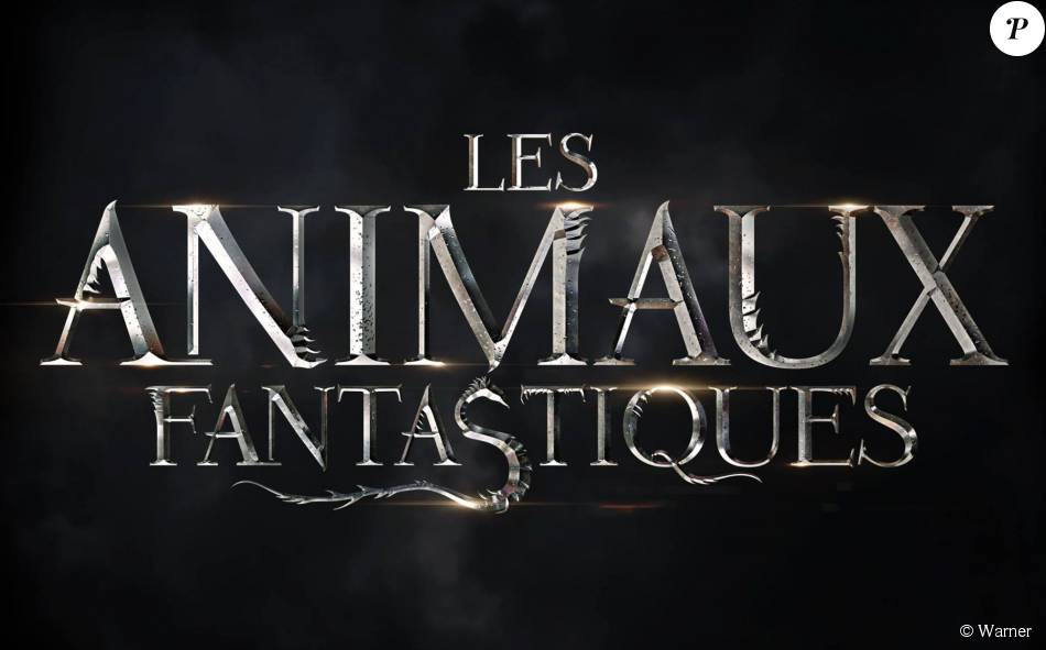 premier poster du film les animaux fantastiques sortie pr vue en novembre 2016 purepeople. Black Bedroom Furniture Sets. Home Design Ideas