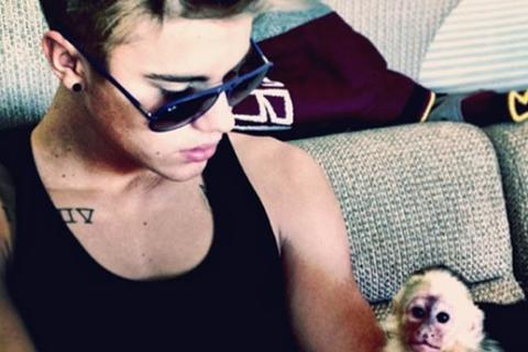 Justin Bieber veut un nouveau singe, trois ans après avoir abandonné Mally !