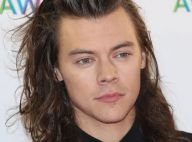 Harry Styles : Le chanteur des 1D au casting d'un blockbuster hollywoodien