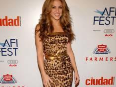PHOTOS : Lisa Rinna a piqué la robe de Shakira ! (réactualisé)