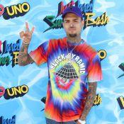 Chris Brown : Papa surveillé avec sa fille Royalty