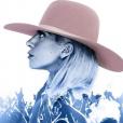 Lady Gaga confirme qu'elle fera le show à la mi-temps du Super Bowl sur Instagram le 29 septembre 2016.