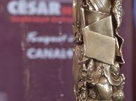 """César 2017 : Polanski """"indiscutable"""", les snobés... Ce qu'il faut retenir"""