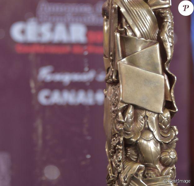 Illustration - Conférence de presse pour l'annonce des nominations pour les César 2017 au Fouquet's à Paris. Le 25 janvier 2017 © Giancarlo Gorassini / Bestimage