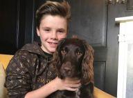 Cruz Beckham : Le fils de David et Victoria reçoit un cadeau inestimable