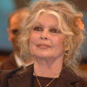 """Brigitte Bardot : """"J'aurais dû me marier avec un type qui habite Neuilly"""""""