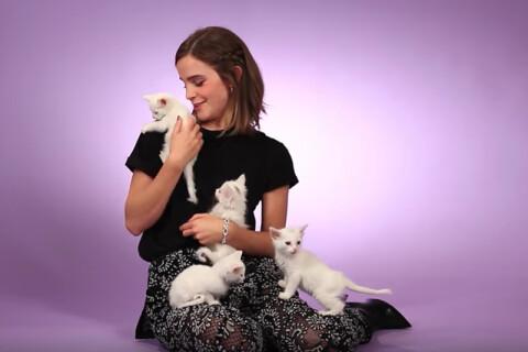 Emma Watson craque en pleine interview, incapable de se concentrer