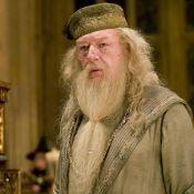 Les Animaux fantastiques 2 : On sait qui va jouer Albus Dumbledore jeune !