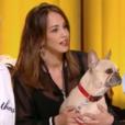 Alice Belaïdi compare le museau de son chien au nez de Jill Scott sur le plateau du prime de Quotidien (TMC) le 19 avril 2017
