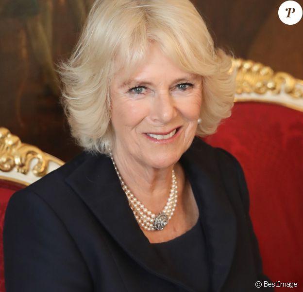Camilla Parker-Bowles, duchesse de Cornouailles visitant l'appartement présidentiel au palais Hofburg à Vienne , le 5 avril 2017, lors du huitième jour du tour du couple princier en Europe qui va durer 9 jours.