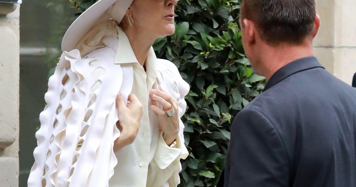 style de la mode de 2019 premier coup d'oeil prix Céline Dion : Moquée pour ses tenues, elle devient un ...