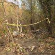 Illustration du lieu où l'acteur Mark Salling s'est suicidé, pendu à un arbre. Le 30 janvier 2018.
