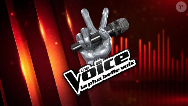 Après la polémique, Mennel sera coupée au montage — The Voice