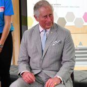 Prince Charles : Pour une histoire de WC, il lâche un gros mot !
