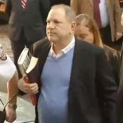 Harvey Weinstein se livre à la police : L'ancien producteur inculpé pour viol
