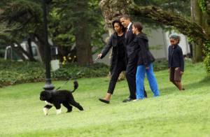 Barack Obama : découvrez les premiers pas de la star, l'adorable Bo... à la Maison Blanche ! Regardez !