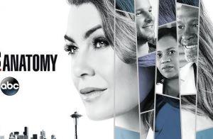 Grey's Anatomy : La série accueille son premier chirurgien gay