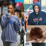 Ariana Grande séparée de Pete Davidson : Mais qui aura la garde du cochon ?