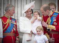 Louis de Cambridge, 7 mois, et le prince Charles : une photo irrésistible