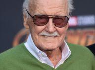 Stan Lee : Les causes de sa mort révélées