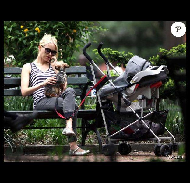 Naomi Watts se balade avec son chien et son jeune fils dans une poussette, à New York