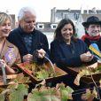 Sophie Mounicot, Yann Arthus-Bertrand et Anne Hidalgo - Vendanges des vignes du Clos Montmartre à Paris le 12 octobre 2019. © Giancarlo Gorassini/Bestimage