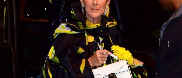 Céline Dion : Nouvelle tenue mode hors de prix avant la sortie de Courage