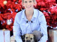 Hélène Gateau, son chien empoisonné : choquée, elle alerte son public