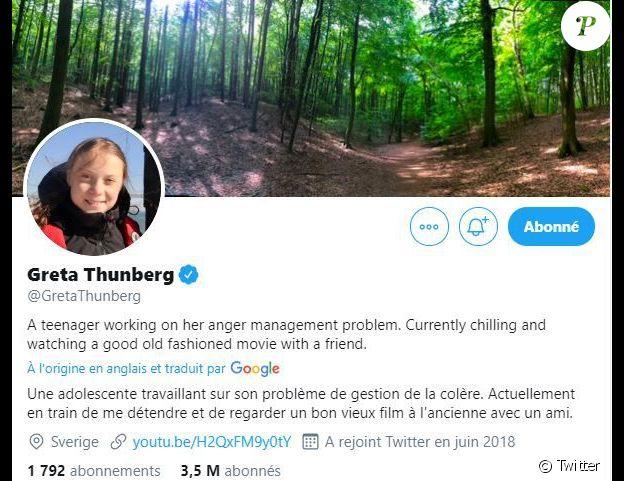 Capture d'écran de bio Twitter de Greta Thunberg.