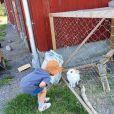 Le prince Alexander s'intéresse aux lapins de la ferme du Bergs Gard MTB Arena. Le prince Carl Philip et la princesse Sofia sont restés en Suède au cours de l'été 2020, coronavirus oblige, et ont partagé avec leurs abonnés Instagram quelques-uns des endroits où ils se sont promenés et ressourcés avec leurs fils le prince Alexander et le prince Gabriel. © Instagram Prinsparet