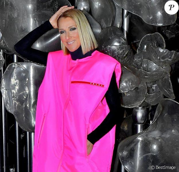 Céline Dion prend la pose pour les photographes après son show au Barclay's Center à New York.