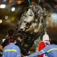 Grand Prix automobile de Bahreïn 2020 à Skahir le 29 novembre 2020. © Dppi / Panoramic / Bestimage