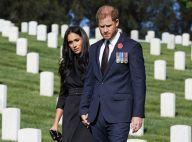 """Le prince Harry """"le coeur brisé"""" : ses relations avec la famille royale toujours délicates..."""