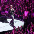 """Exclusif - Concert de la tournee """"Born Rocker Tour"""" de Johnny Hallyday au POPB de Bercy a Paris. Le 16 juin 2013"""