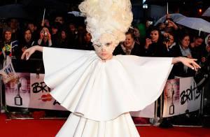 Lady Gaga : Découvrez l'épouvantable hommage que lui a rendu... un fermier anglais !
