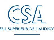 Claire Chazal, Nonce Paolini et Bertrand Méheut... en révolte contre le CSA mais en vain ! Ils ont 8 jours pour obéir ! (réactualisé)