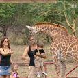 David emmène ses enfants à la rencontre de la girafe