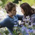 Des images de  Twilight Hésitation.