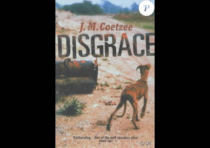 disgrace jm coetzee Use our free chapter-by-chapter summary and analysis of disgrace it helps middle and high school students understand jm coetzee's literary masterpiece.
