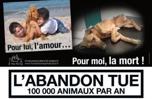 Découvrez la campagne choc, très trash, de la fondation Brigitte Bardot !