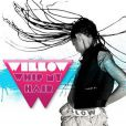 Willow Smith -  Whip my hair  - disponible le 26 octobre 2010