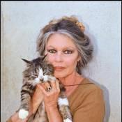 Brigitte Bardot a trouvé sa nouvelle disciple !