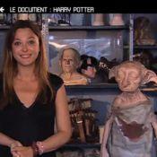 Teaser 50 minutes inside : Dans les coulisses du très attendu Harry Potter 7 !