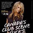 Kesha participe à une campagne de sensibilisation au massacre des bébés phoques au Canada.